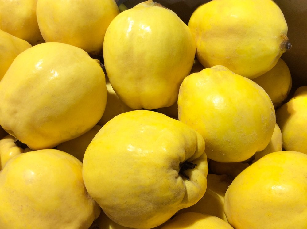 Quince Pear.jpg