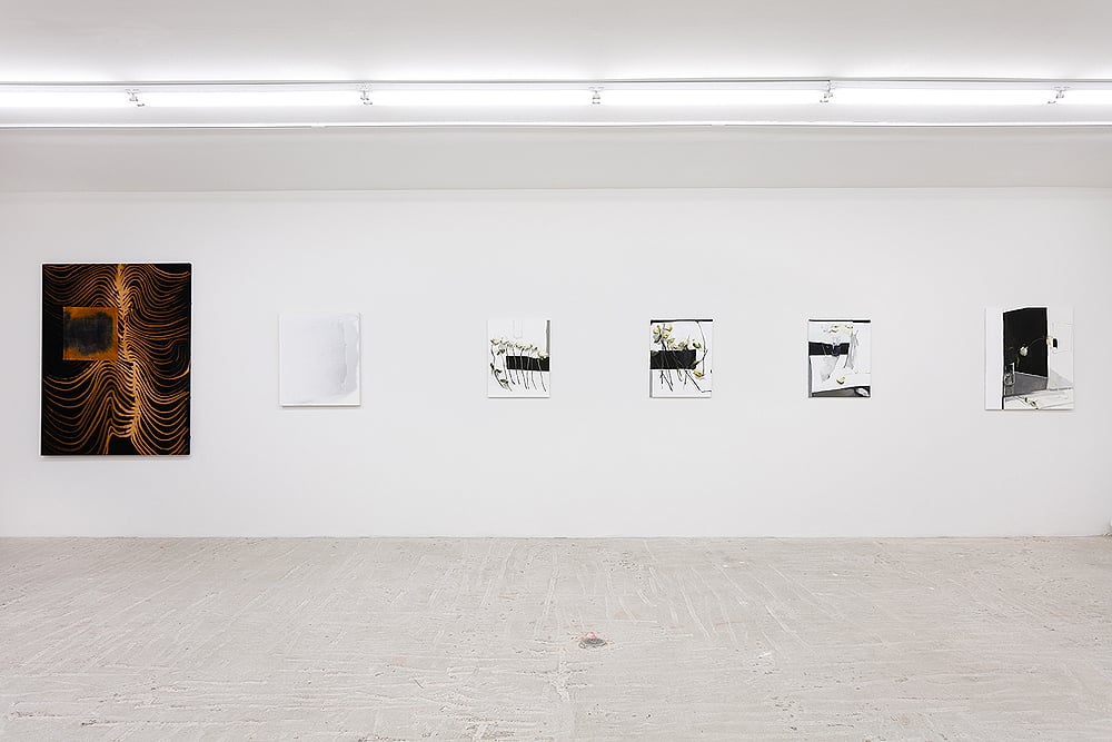 Molly Zuckerman-Hartung and Dana DeGiulio     QUEEN    Installation view at Lyles & King