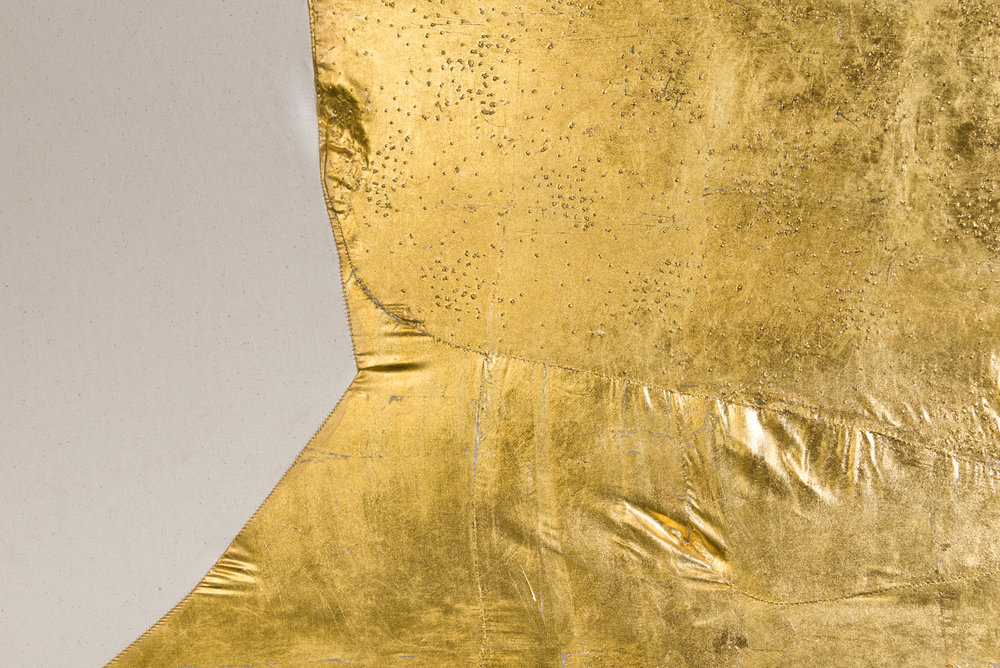 Erica Mahinay   Gilded (Border-Patrol) , 2016  Detail view