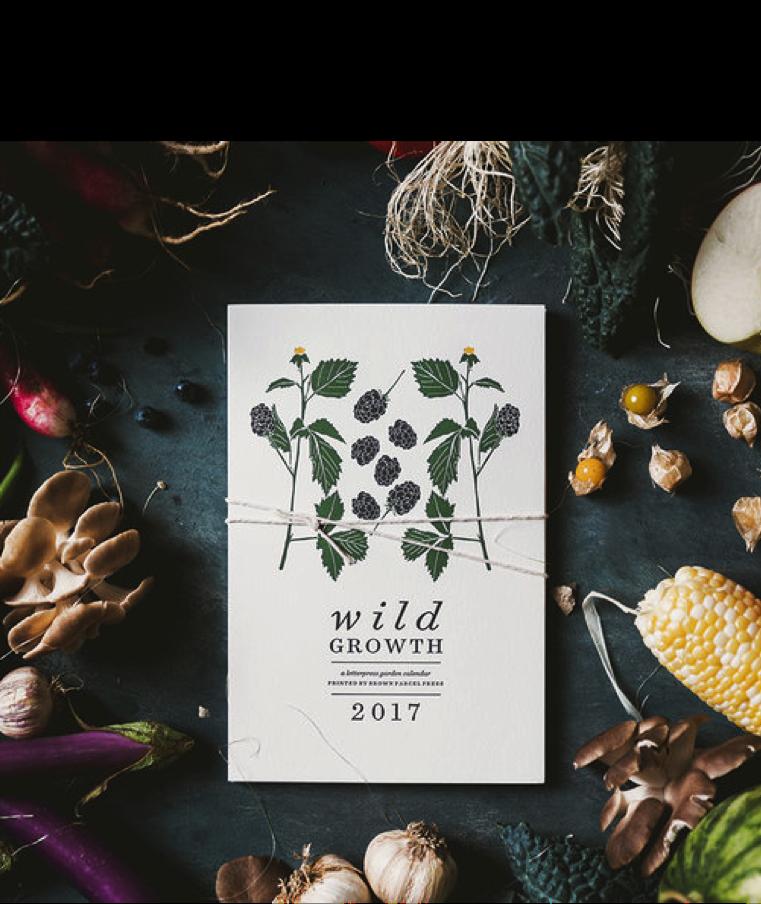 Brown Parcel Press 2017 Calendar