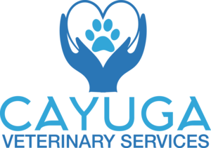 Cayuga Veterinary Services