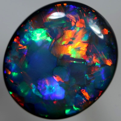 Harlequin Pattern Black Opal.