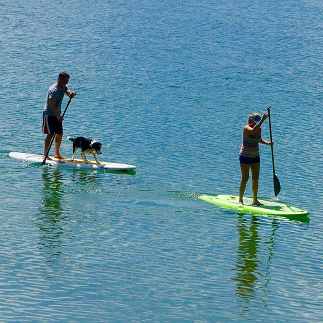 #paddleboarding at #sugarcrest