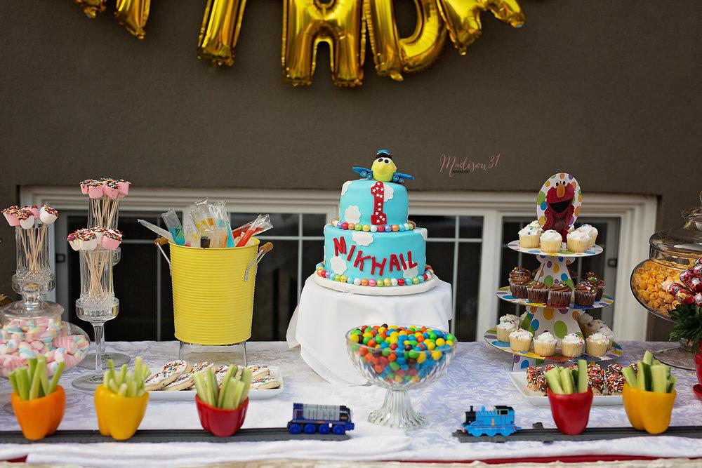 First Birthday Celebration_0122 copy.jpg