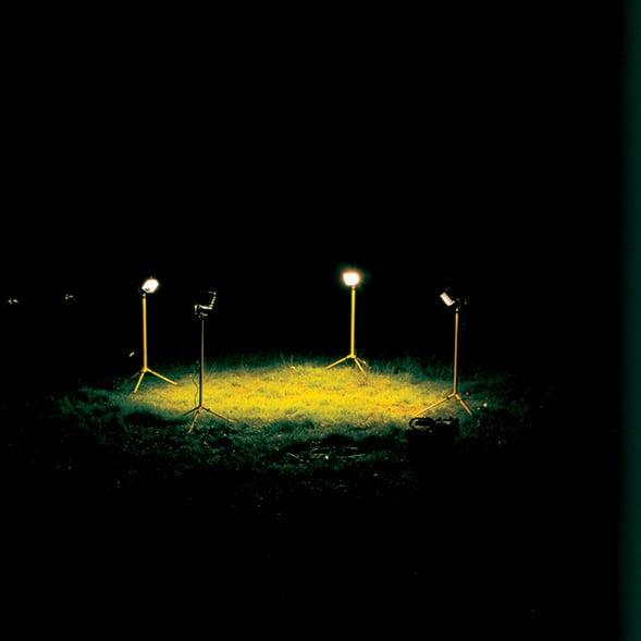 grass_589.jpg