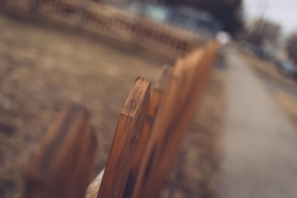 sundayeveningwalk_blog8.jpg