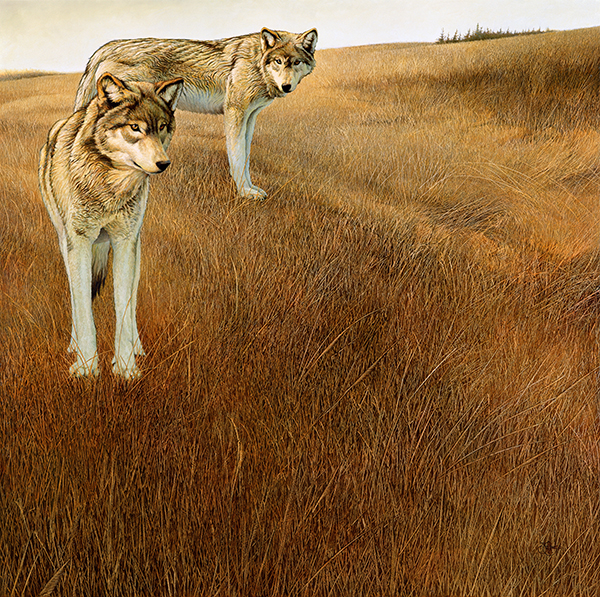 """""""The Return"""" - 32""""x32"""" canvas giclees from $199. The original oil painting is also available."""