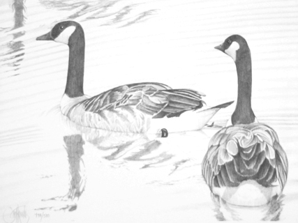 """Geese""    - Only 2 prints available in this   limited edition. Image size: 8""x10.5"" f  rom $45."