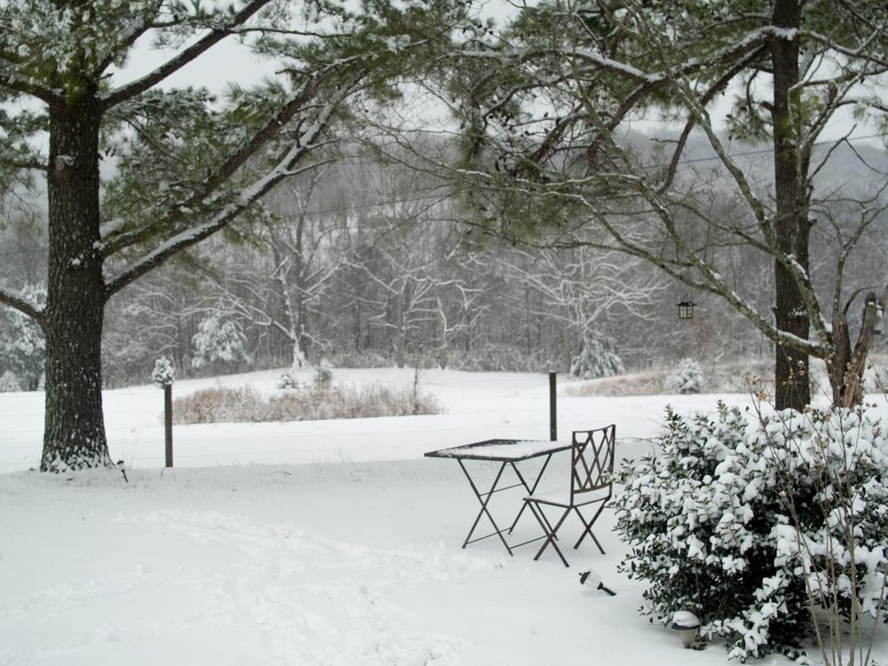 Snow_23.jpg