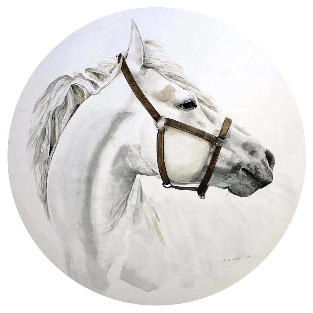 Horse, Rendered for Irene Neuwirth's Flagship Store, 2014