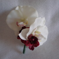 Cream Orchid and Burgundy Corsage - Minneapolis Silk Florist