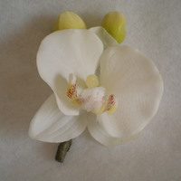 Cream Orchid Boutonniere-Minneapolis Silk Florist
