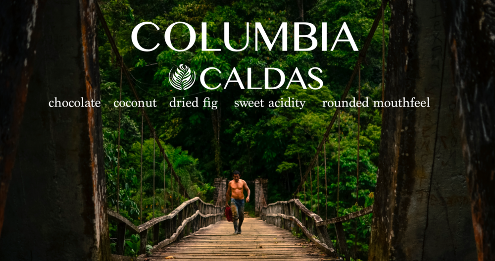 Columbia Caldas Decaf