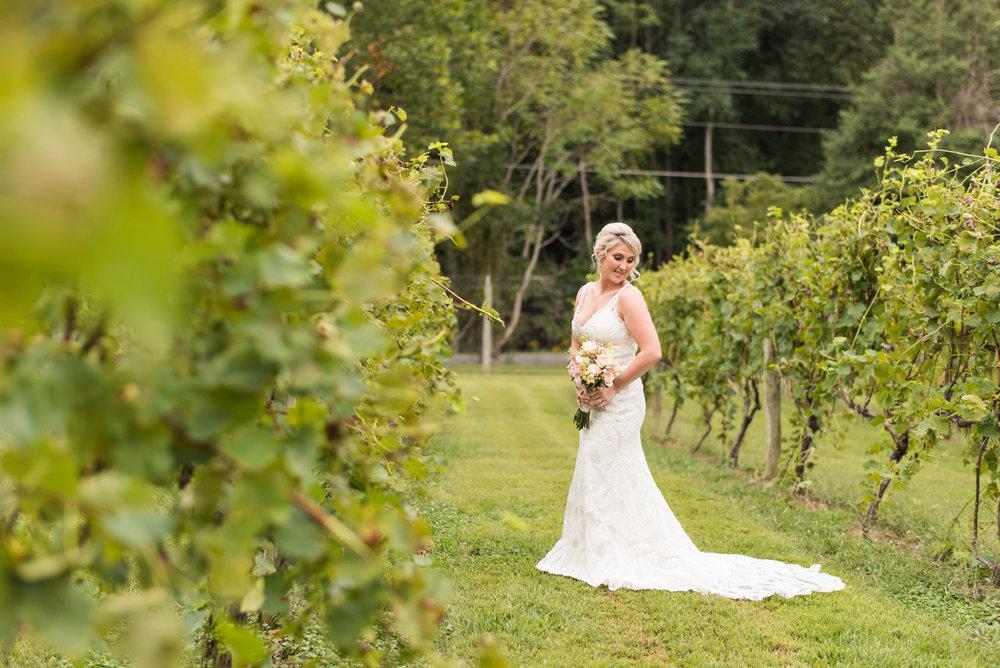 Bride in the Vineyards