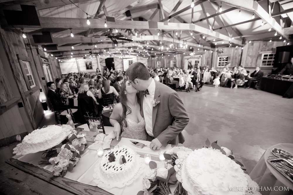 Cake Cutting at the Wedding Reception