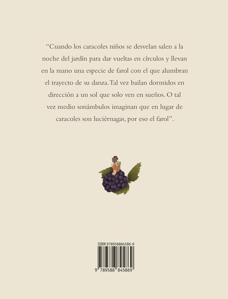 C-PORTADA_Las-visiones-fantasticas_Maria-Jose-Ferrada_Tragaluz-editores_w.jpg