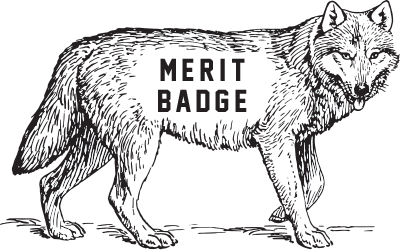 Merit Badge