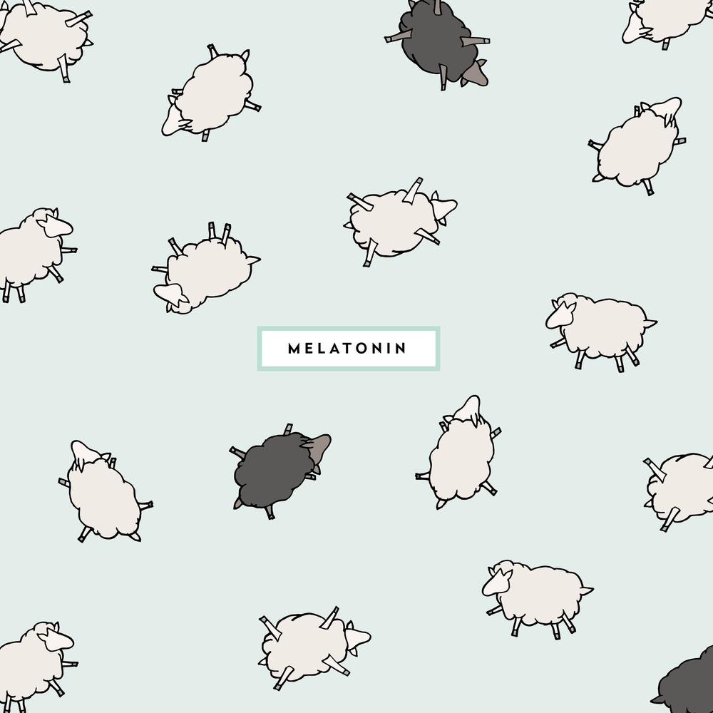 melatonin-01.png
