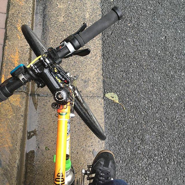雨が上がってきたのでこれからデリバリー🚲☕ #bicyclecoffeetokyo #bicyclecoffee #delivery #deliveredbybicycle #coffee #roast #bicycle #配達 #コーヒー #自転車 #安全運転