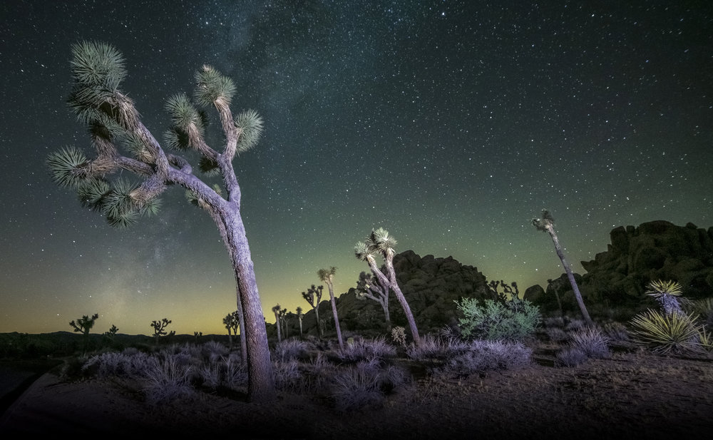 Joshua Tree - Astrophotography time-lapse documentary featured on