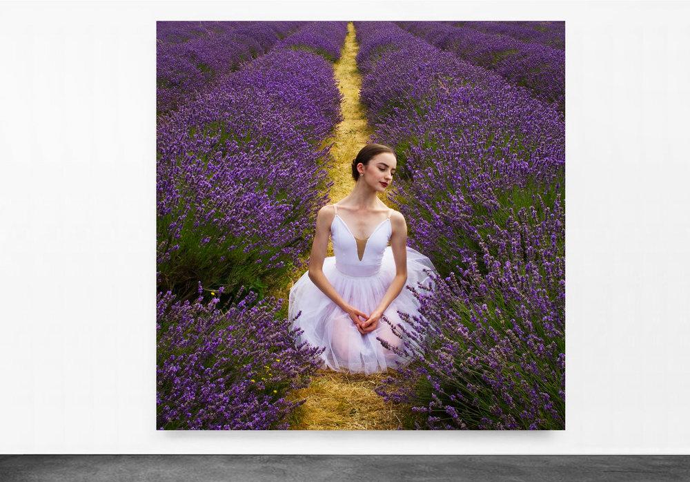 PANTUSO_PHOTOGRAPHY_VIOLA_LAVENDER_FIELDS_UK.jpg