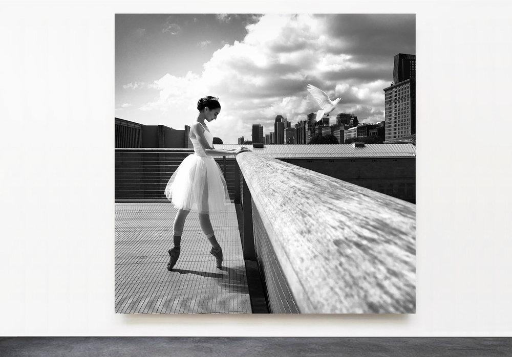 PANTUSO_PHOTOGRAPHY_VIOLA_ART_INSTITUTE_CHICAGO.jpg