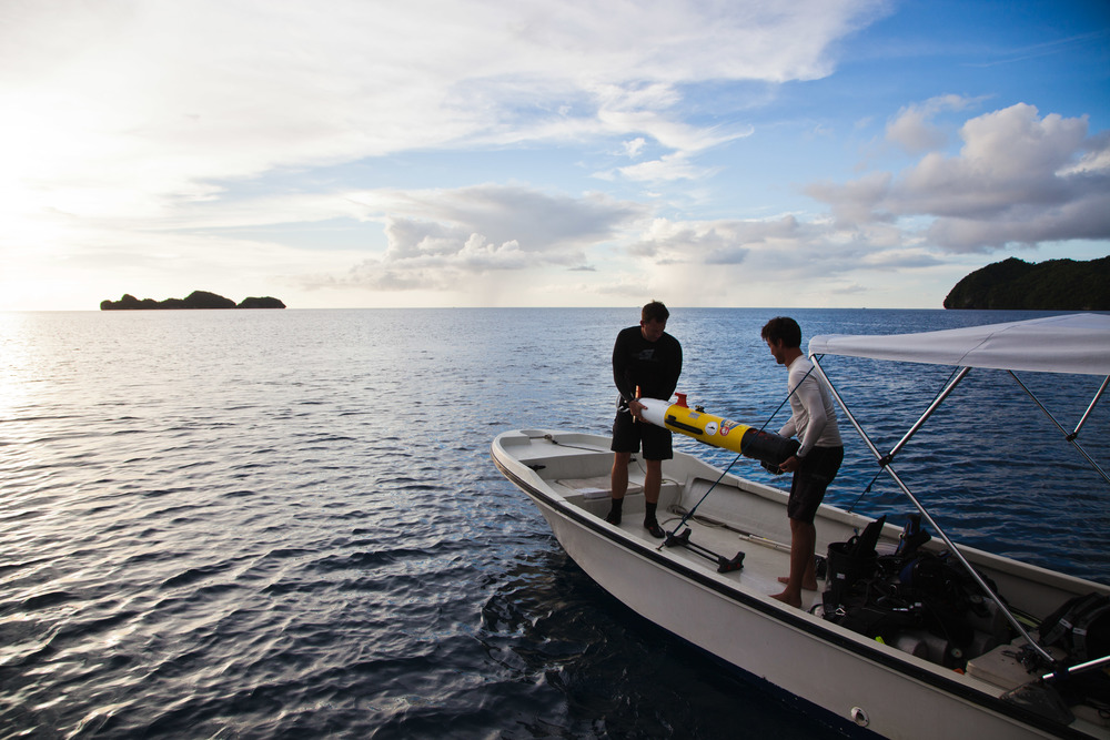 Eric Terrill (left) and Billy Middleton of the Scripps Institution of Oceanography prepare to launch a Remus autonomous underwater vehicle in Palau's western lagoon. Credit: Andy Isaacson