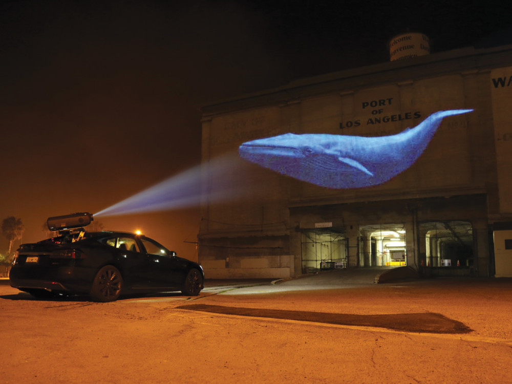 The retrofitted Tesla projects a blue whale onto a building. Credit: Andrew Eckmann