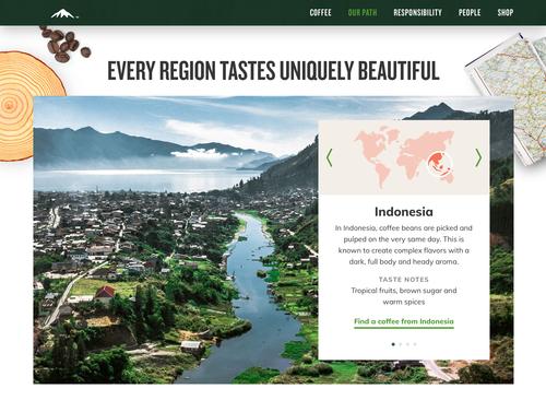 Paradise green coffee svetol reviews image 4