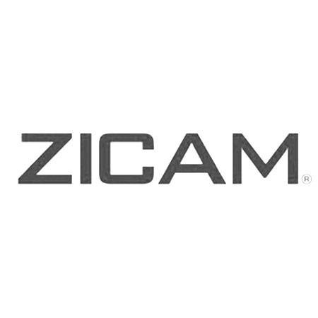 Saam_Gabbay_Zicam.jpg