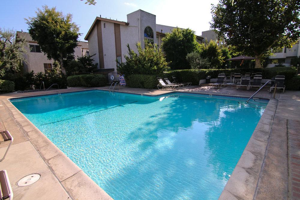 Pool 2 (1 of 1).jpg