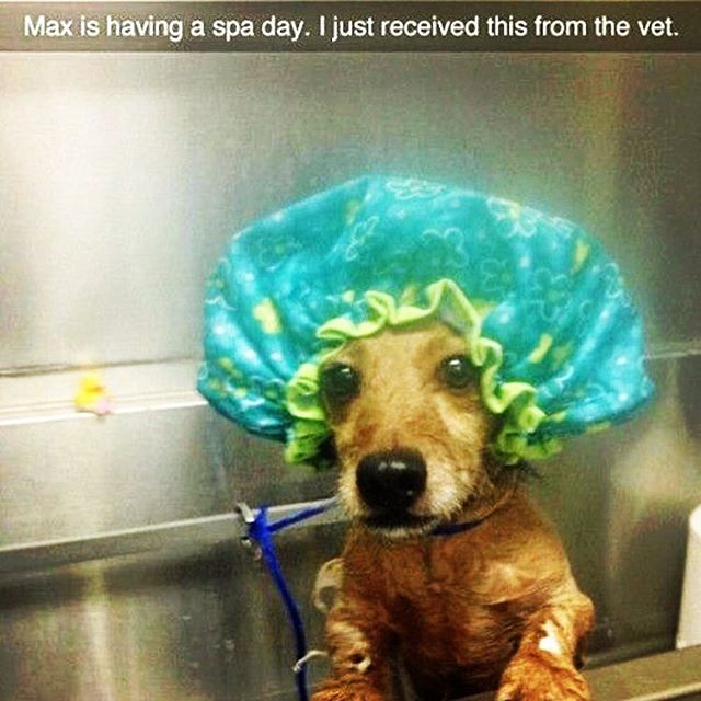 YOLO, Max.