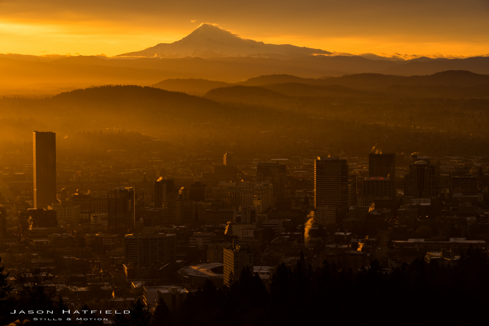 Portland Magic