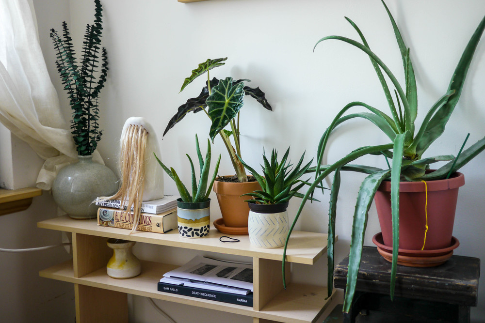 Ceramic Shelf piece by Elizabeth Jaeger