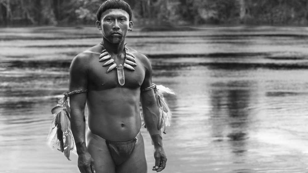 embrace of the serpent passerbuys top ten films 2016