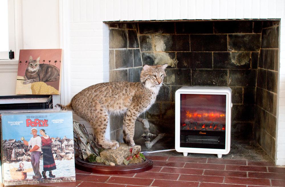 Fireplace Heater, Crane USA