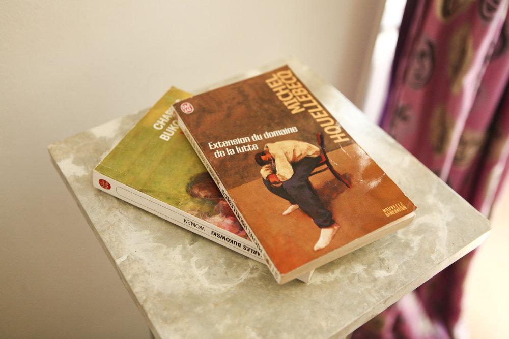 Diane's Favorite Books:  Women by Charles Bukowski &   Michel Houellebecq