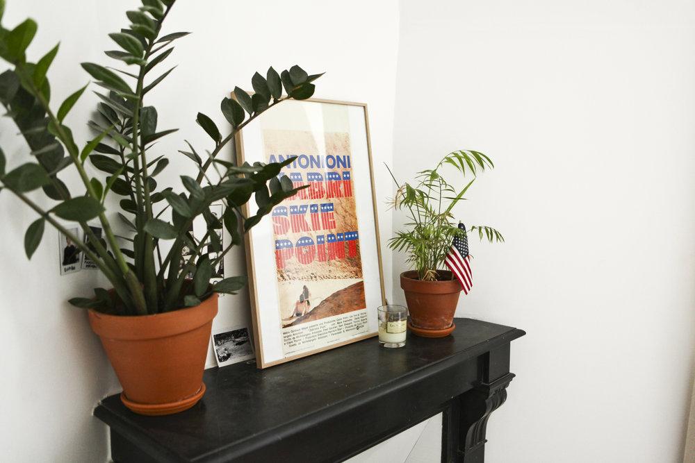 Plants pots:    Madeleine et Gustave