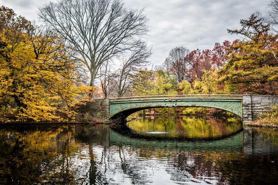 autumnal-reflections-657130574-5a85a0b73de4230037ded41d.jpg