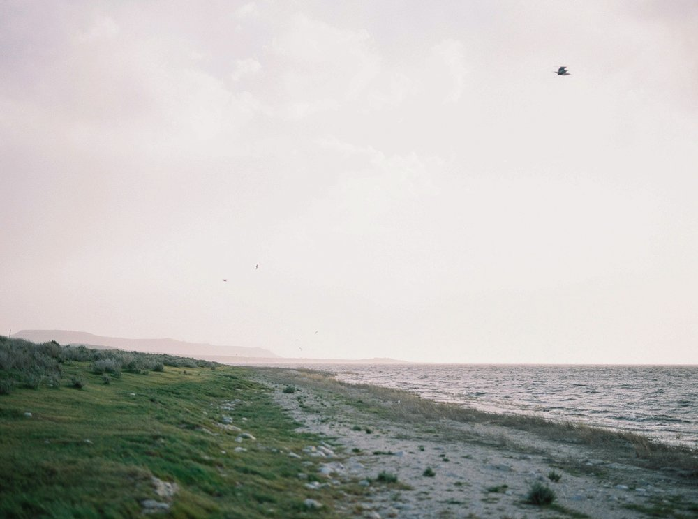 Kathryn Bruns - Kathryn Bruns Photography5_WEB.jpg