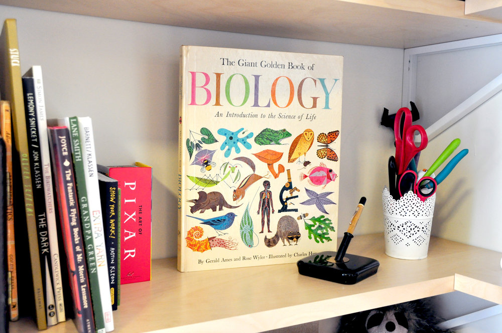 This fantastic Biology book with illustrations by Charles Harper used to belong to my grandpa, who is also an artist.  It's really cool to know Charles Harper's work is inspiring to both of us! You can also see I keep a few of my favorite picture books close at hand.
