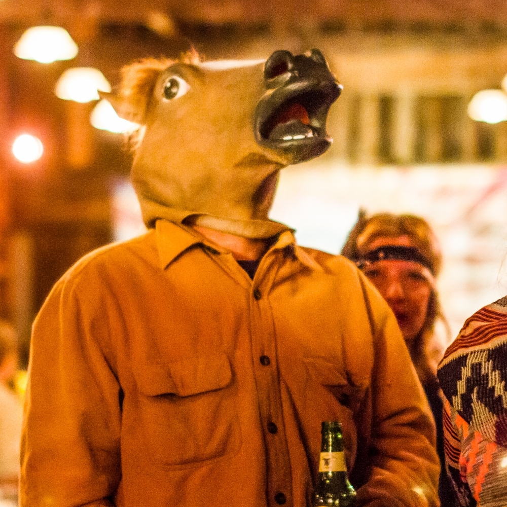 prallsville-mills-halloween-horse-costume.jpg