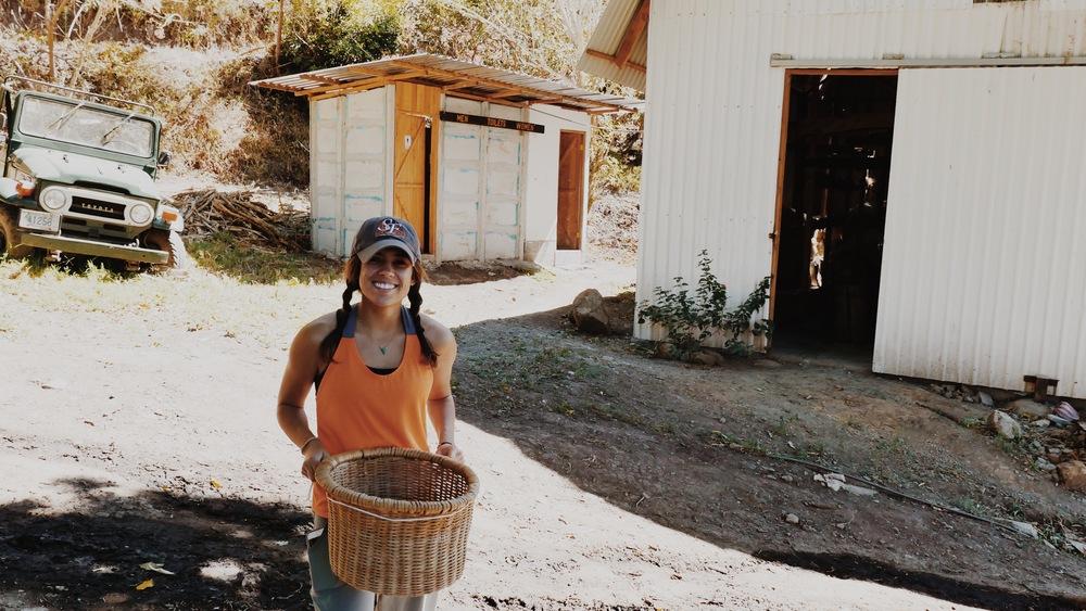 Photo taken by Panamanian farmer, Luis!