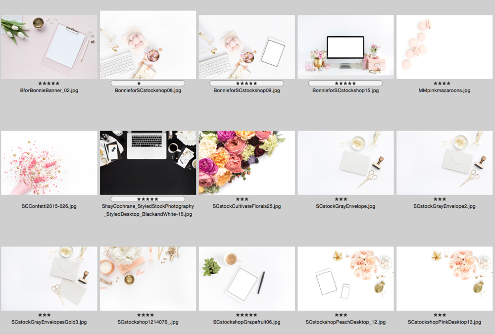 SC Stockshop Styled Photography on Etsy | The Editor's Touch