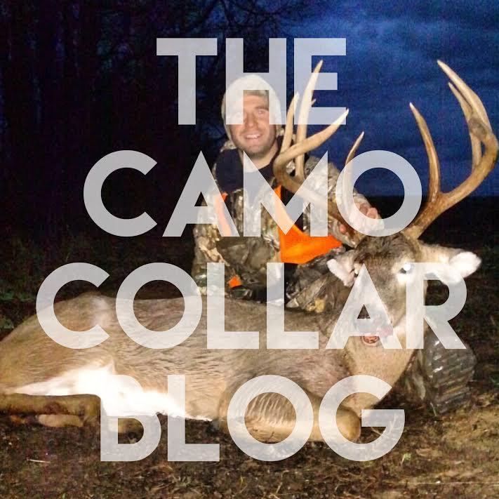 camocollarblog.jpg
