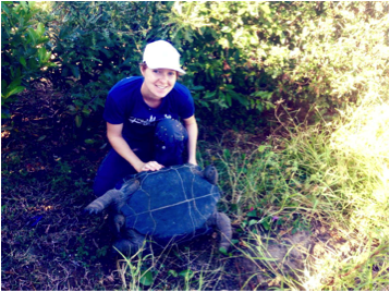 helping with tortoise morphometrics