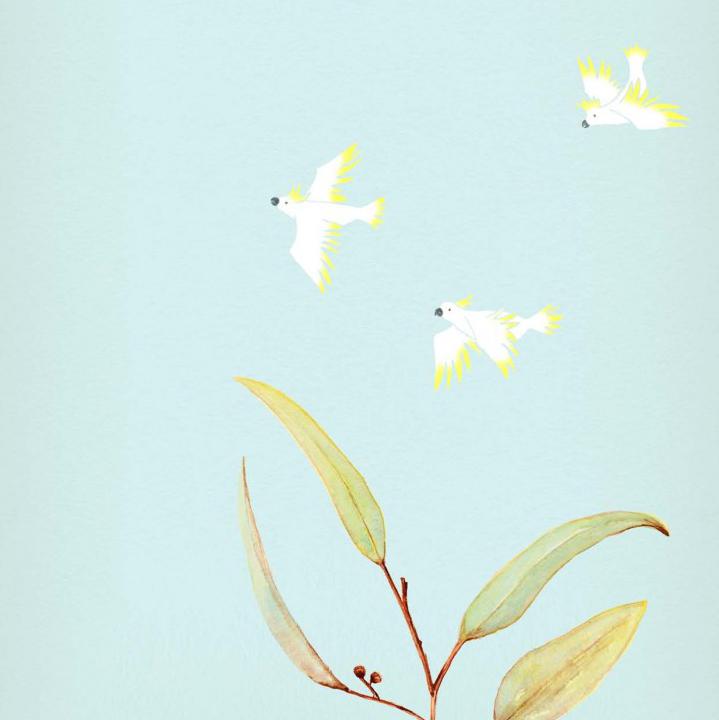 Kiaragreen_bookcover