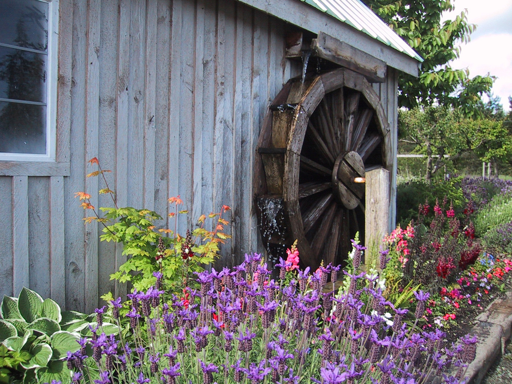 Lost Mountain Lavender Wheelhouse