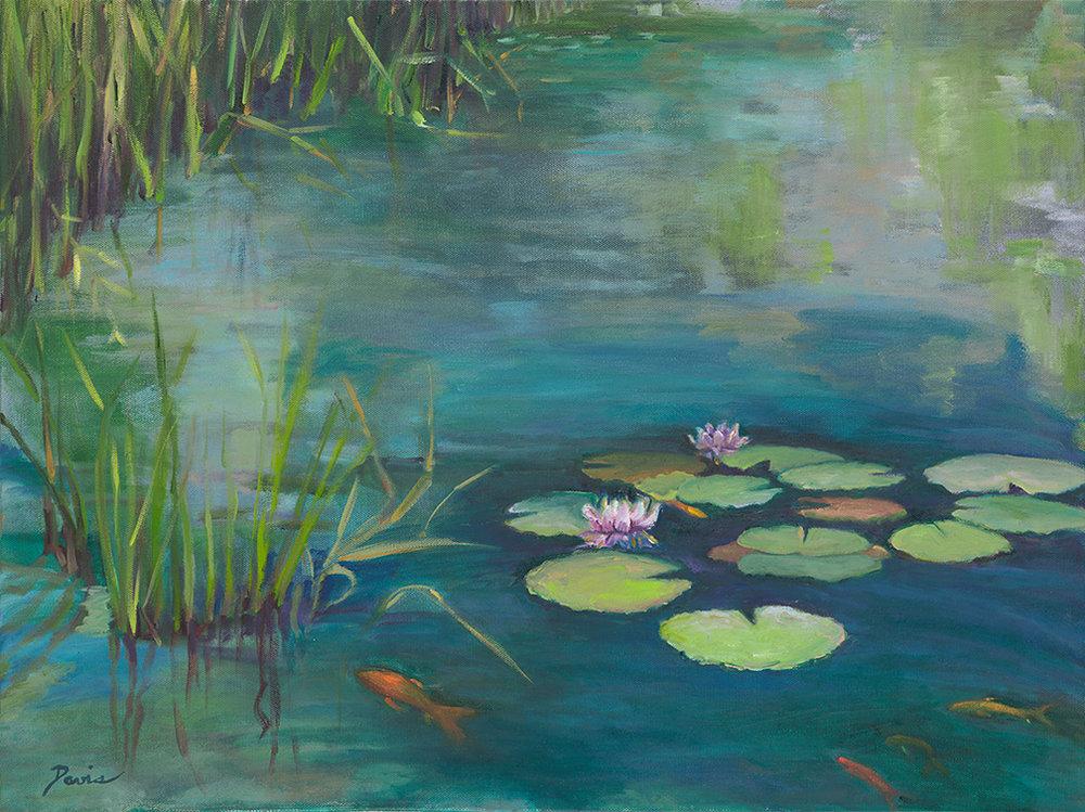 lilly-pond.jpg