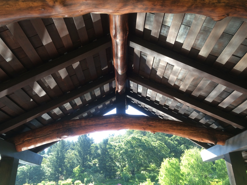 tea house inside roof.JPG